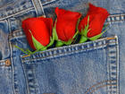 Jeans with rose buds in back pocket