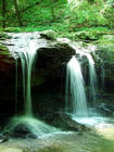 TNfrozen head state park waterfall.jpg