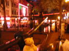 Forest in the Red Light District - Amsterdam