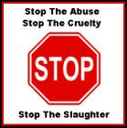STOP THE ABUSE SLAUGHTER.jpg