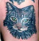 cat-tattoo-120139595518155.jpg