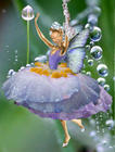 Custom Fairy photoart 2.