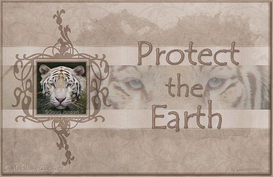 protect the earth.bmp