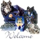 Wolf welcome