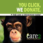 You Click We Donate