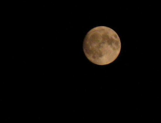 Resize of Moon 7-16-08 003 02