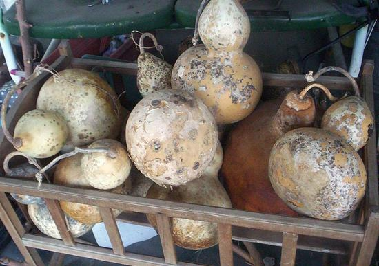 Lovely, Dirty Gourds...