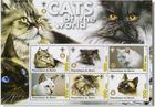 SixCats of the World