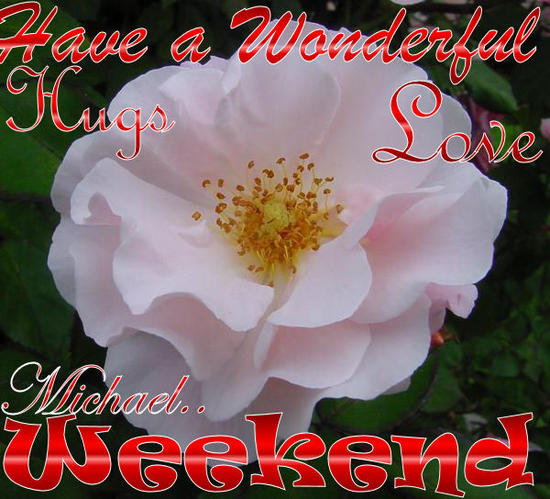 have a weekendflower beatiful14.jpg