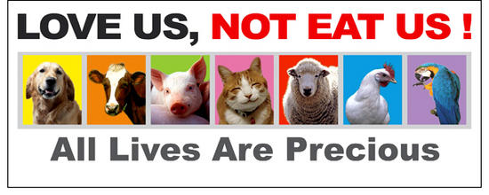 Love Us, Not Eat Us
