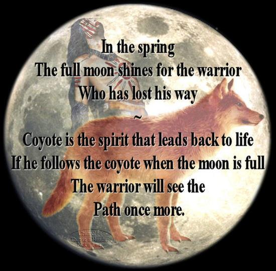 Coyote_Spirit.bmp