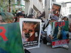 Fur Free Friday Los Angeles_ CA 11-28-08_22.jpg