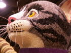 2004 Rose Parade Cat #1