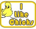 I like chicks!