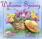 welcome spring by Teresa