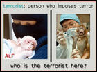 WHO IS THE TERRORIST, THE ANIMAL TORTURER OR THE ANIMAL RESCUER?