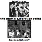 ALF Freedom Fighters
