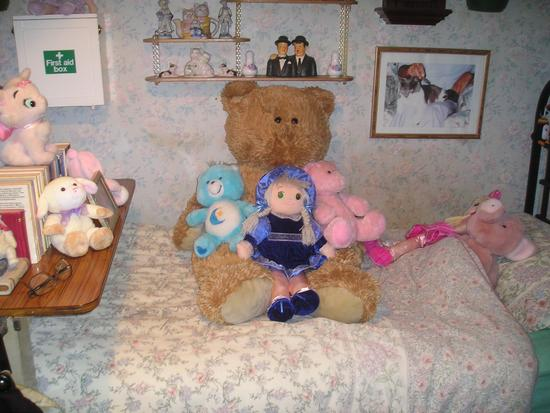 "David""s   Teddy   Bears"