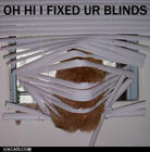 fixed the blinds.jpg