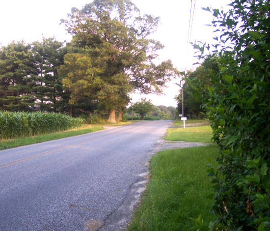My road, my driveway on right