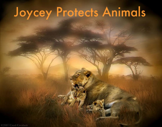 Joycey Protects Animals From Rhonda M_.jpg