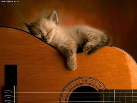 Asleep_On_The_Guitar.jpg