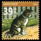 Nederlands cat stamp, graphic.