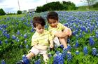 Blue Bonnet Boys