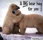 polar bear hugs
