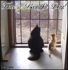 have_a_beautiful_day_cats_in_doorway.jpg