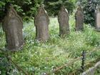 graveyard pic from my new friend :)