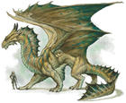 Bronze Dragon