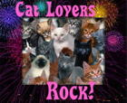cat_lovers_rock.jpg
