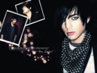 WallpaperAdamLambert1.png