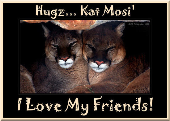 Love My Friends cougars