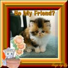 Be_20my_20friend_20kitty_20in_20frame_001.jpg