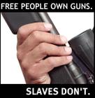 gun_rights_slaves_preview.jpg