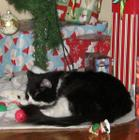 Tired...Too many presents to unwrap