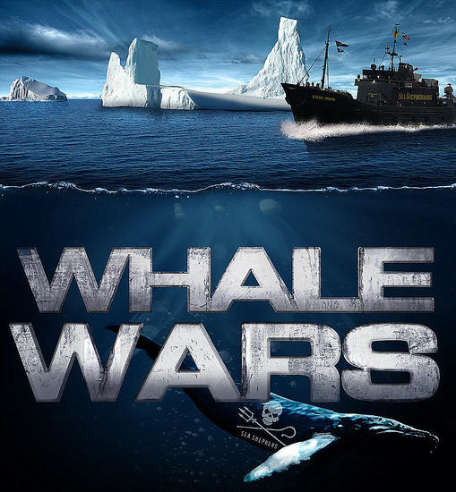 Whale_Wars_Sea_Shepherd0202938.jpg