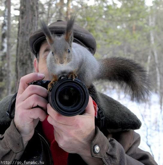 squirrel on camera.jpg
