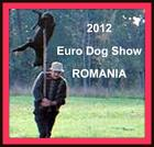 Romania butchers its strays/animals!