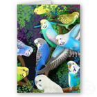 budgerigars and maidenhair fern