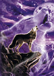 Shippo Wolf
