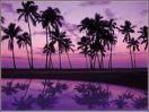 Maui Gal