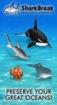 SharkBreak Relax