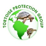 Tortoise Protection Group