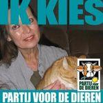 Suzanna van der Voort