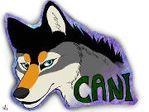 Cani L.