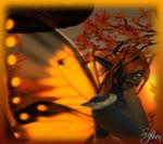 Lepidopter Phoenyx