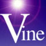 Vine Medium